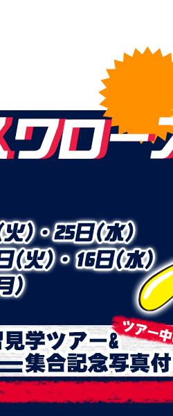 東京ヤクルトスワローズ公式戦特集3